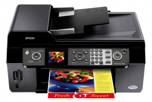 Epson WorkForce 500 Manual