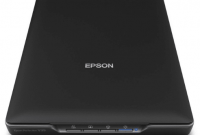 Epson Perfection V19 Driver