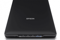 Epson Perfection V39 Driver